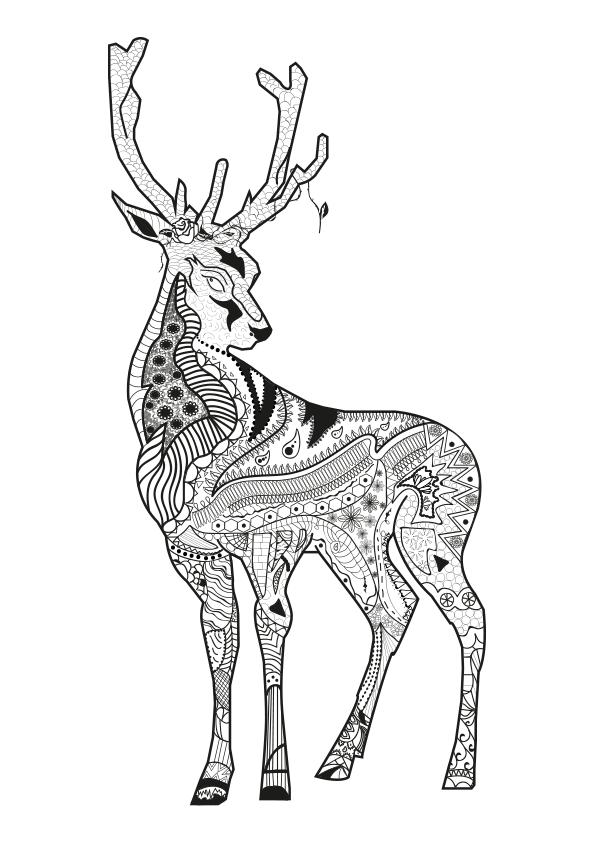 Dibujo para colorear mandala ilustración silueta ciervo