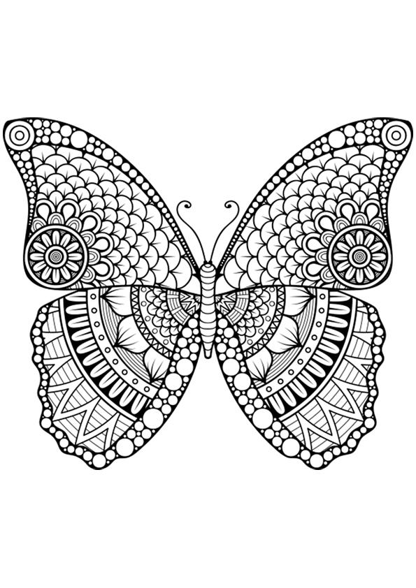 Dibujo para colorear mandala forma mariposa