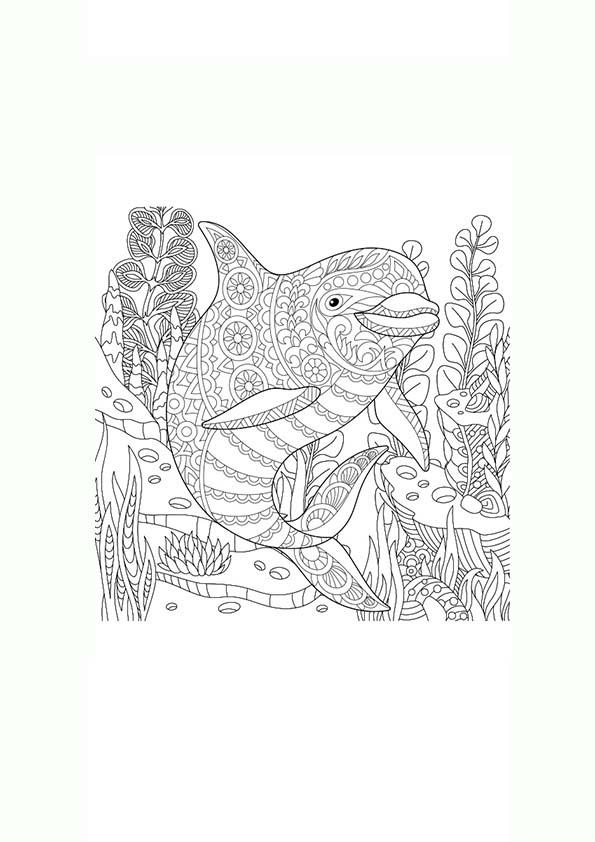 Dibujo para colorear mandala ilustración silueta delfin entre algas ...