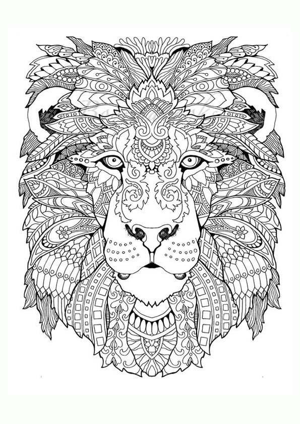 Dibujo Para Colorear Mandala Ilustración Silueta Cabeza De León
